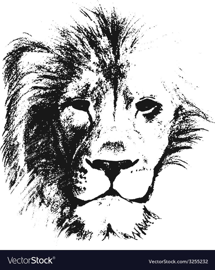 Lion head hand drawn vector