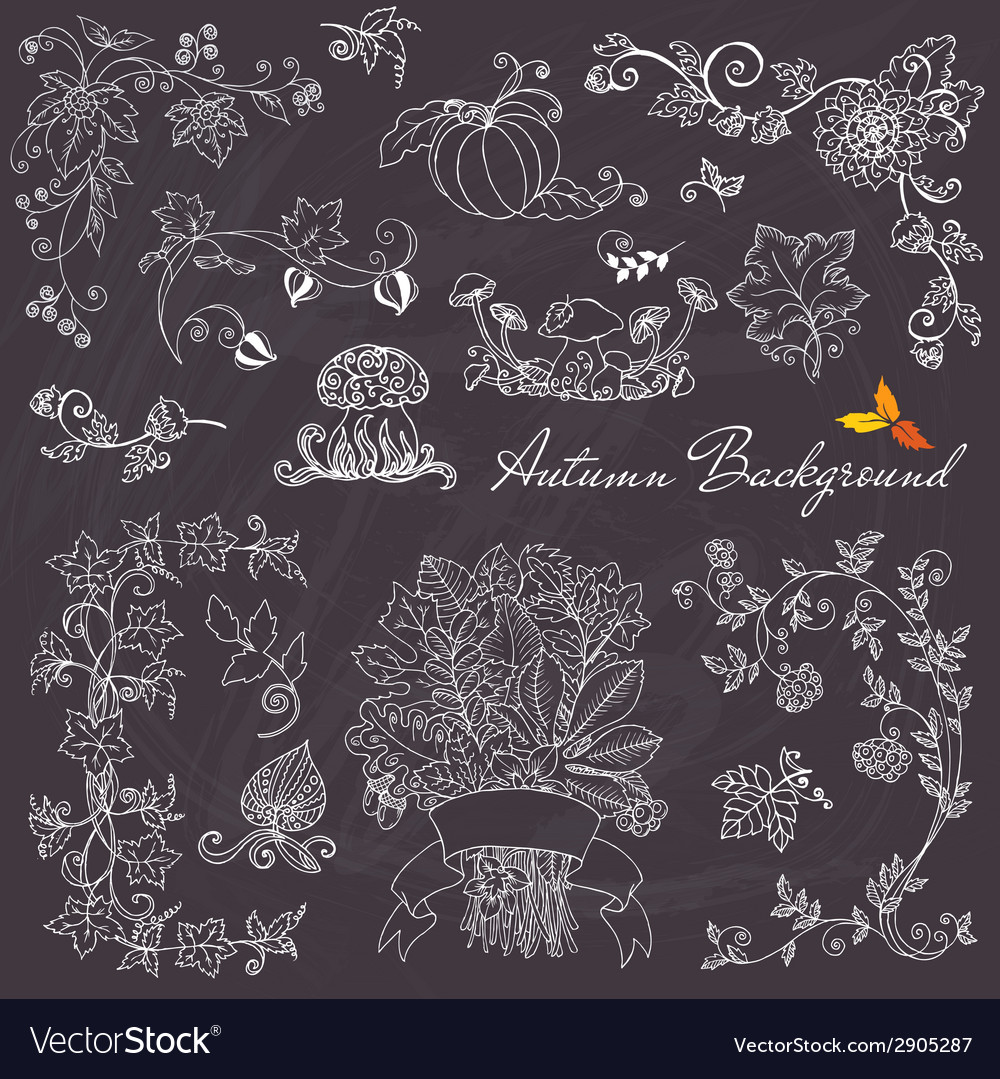Set of decorative autumn branches and elements vector