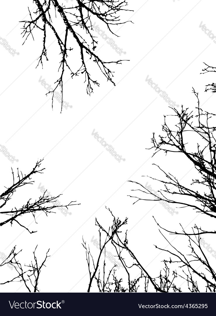 Grunge branches frame vector