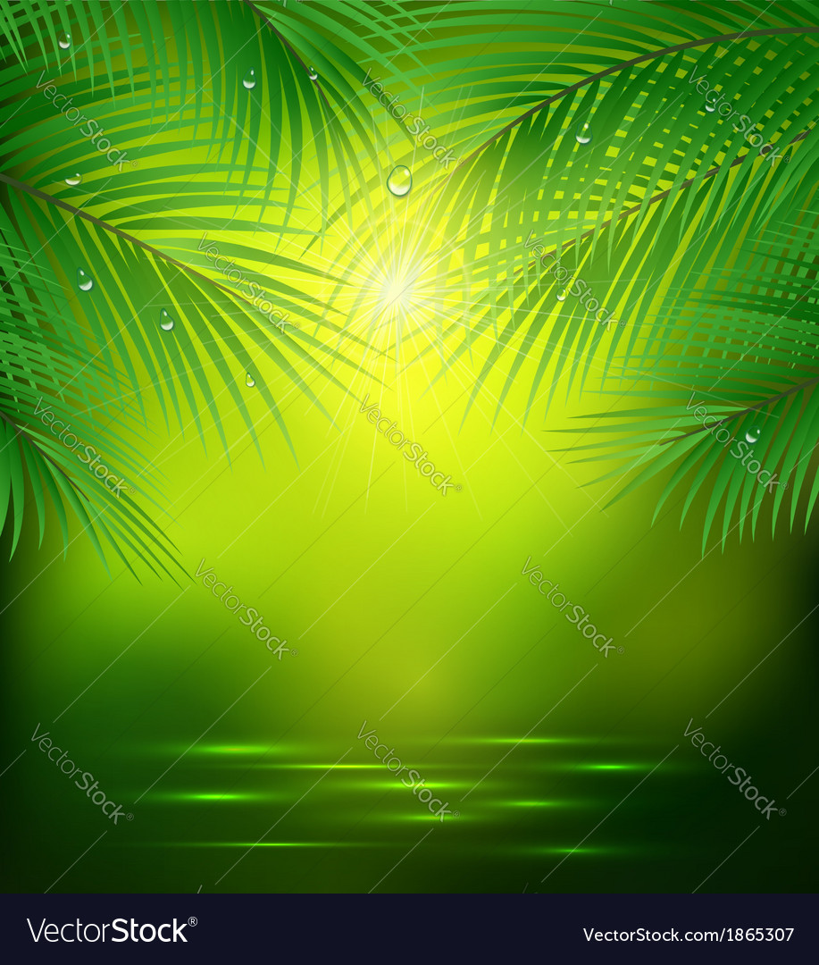 Green background with palm branches vector