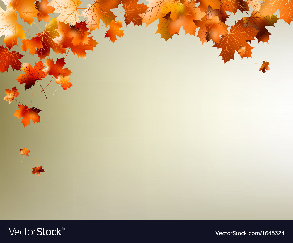 Colorful autumn leaves falling eps 10 vector