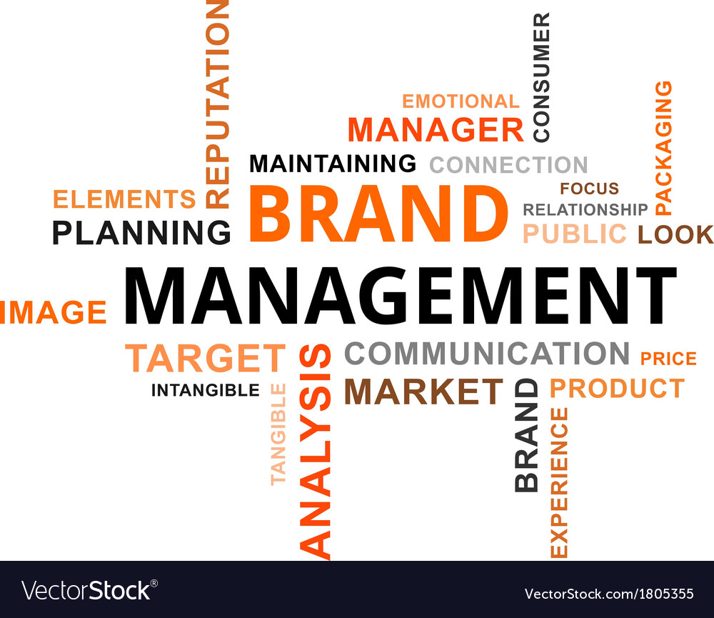 Word cloud brand management vector