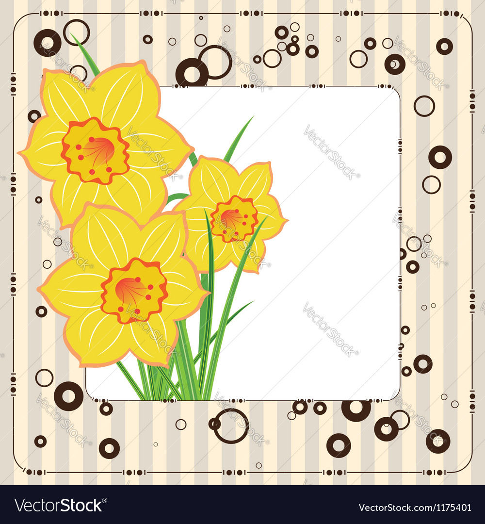 Bouquet of daffodils greeting card vector