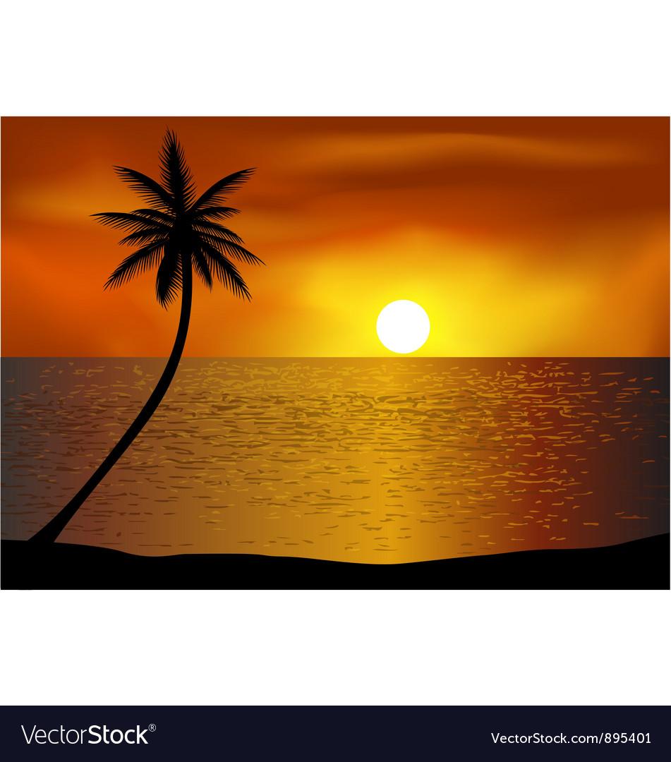 Tropical beach background vector