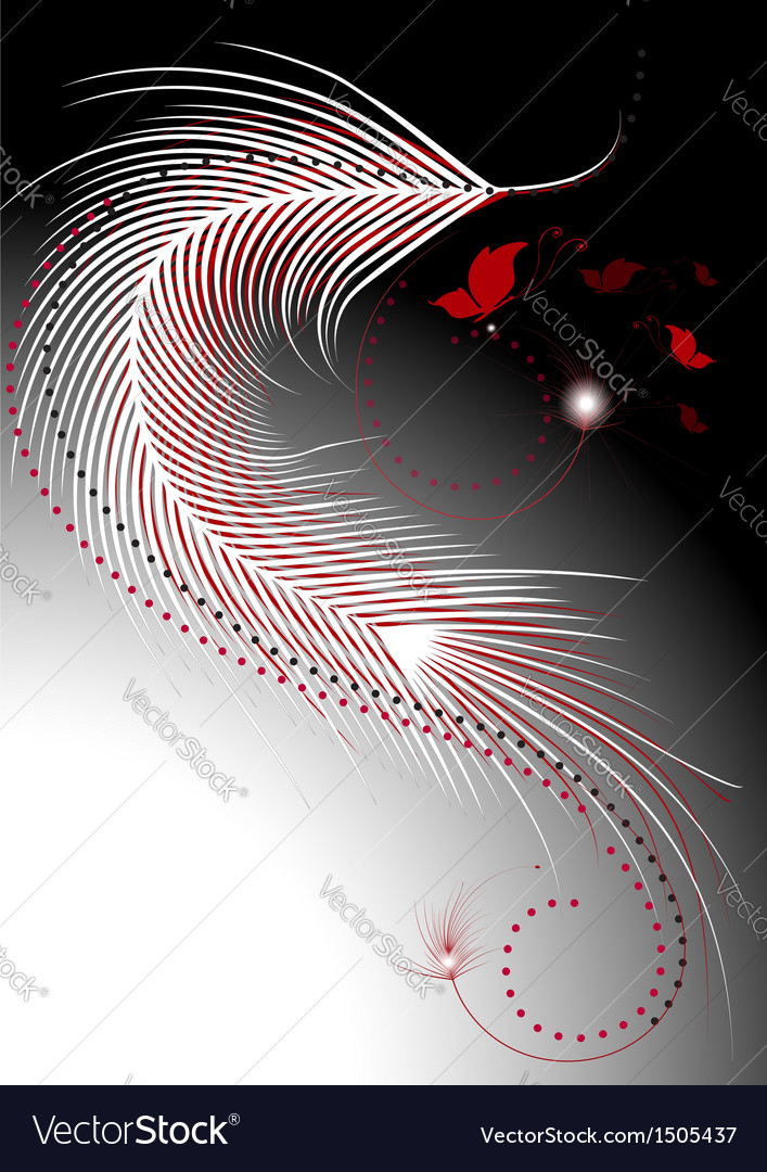Feathers with decor of butterflies vector