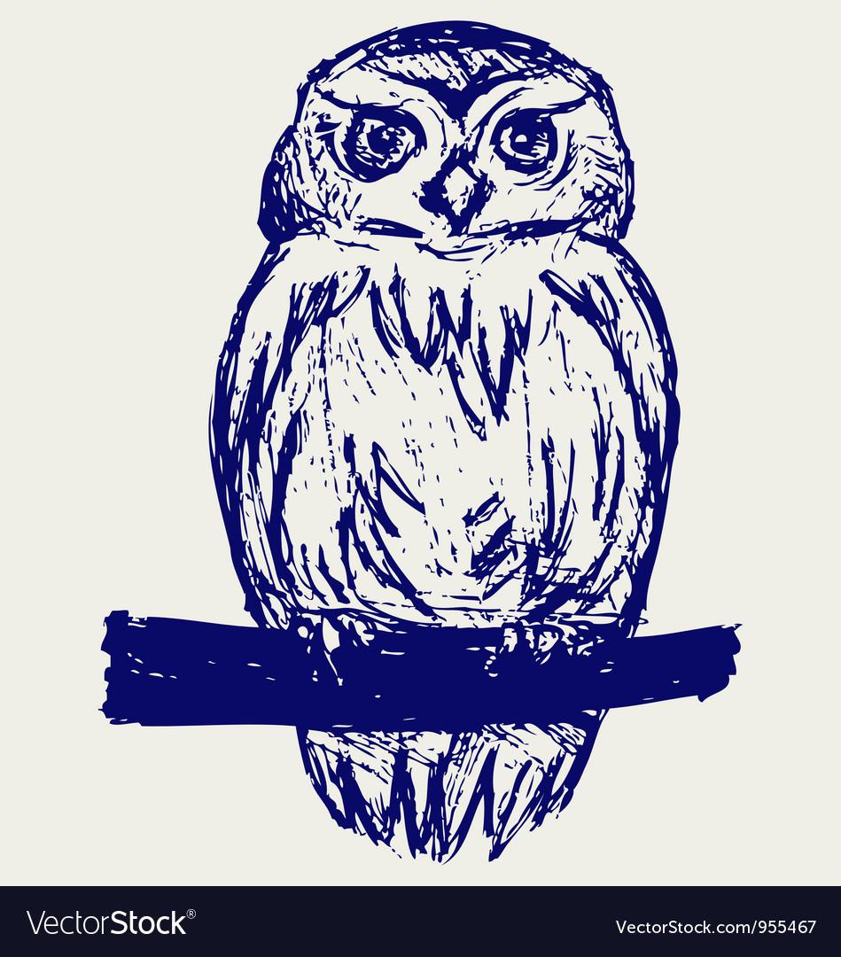 Great owl vector