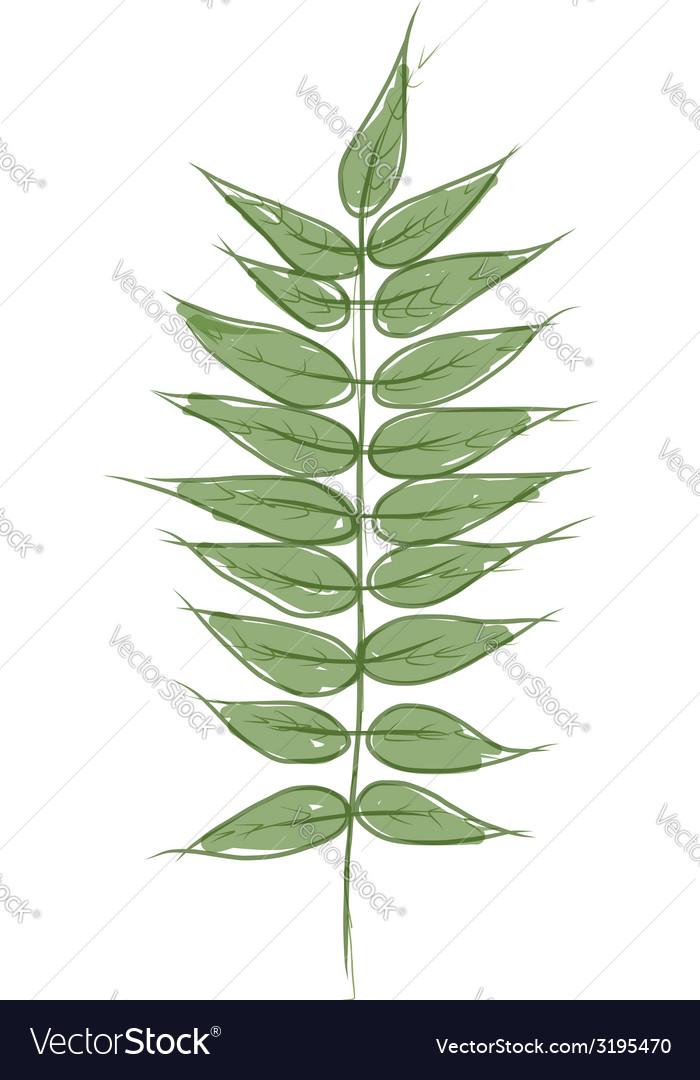 Green petal sketch for your design vector
