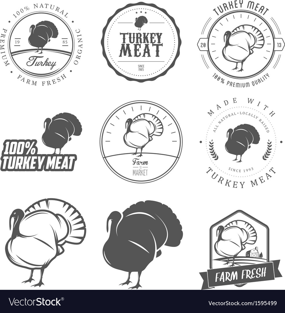 Set of premium turkey meat labels and stamps vector