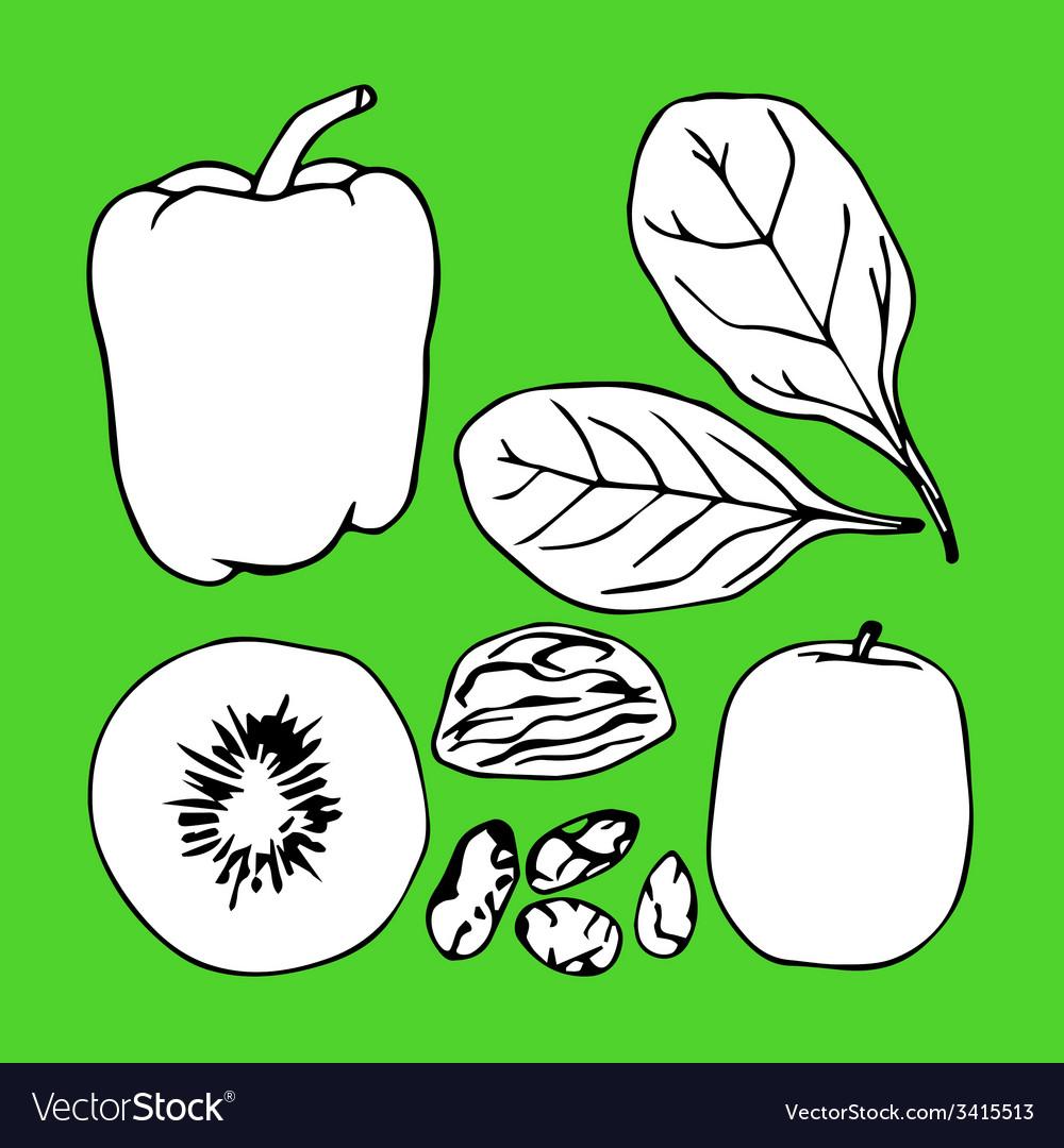 Green contour vegetables set vector