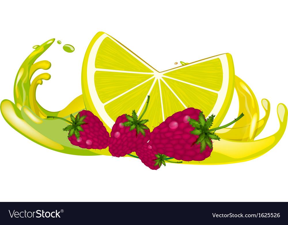 Juice splash vector