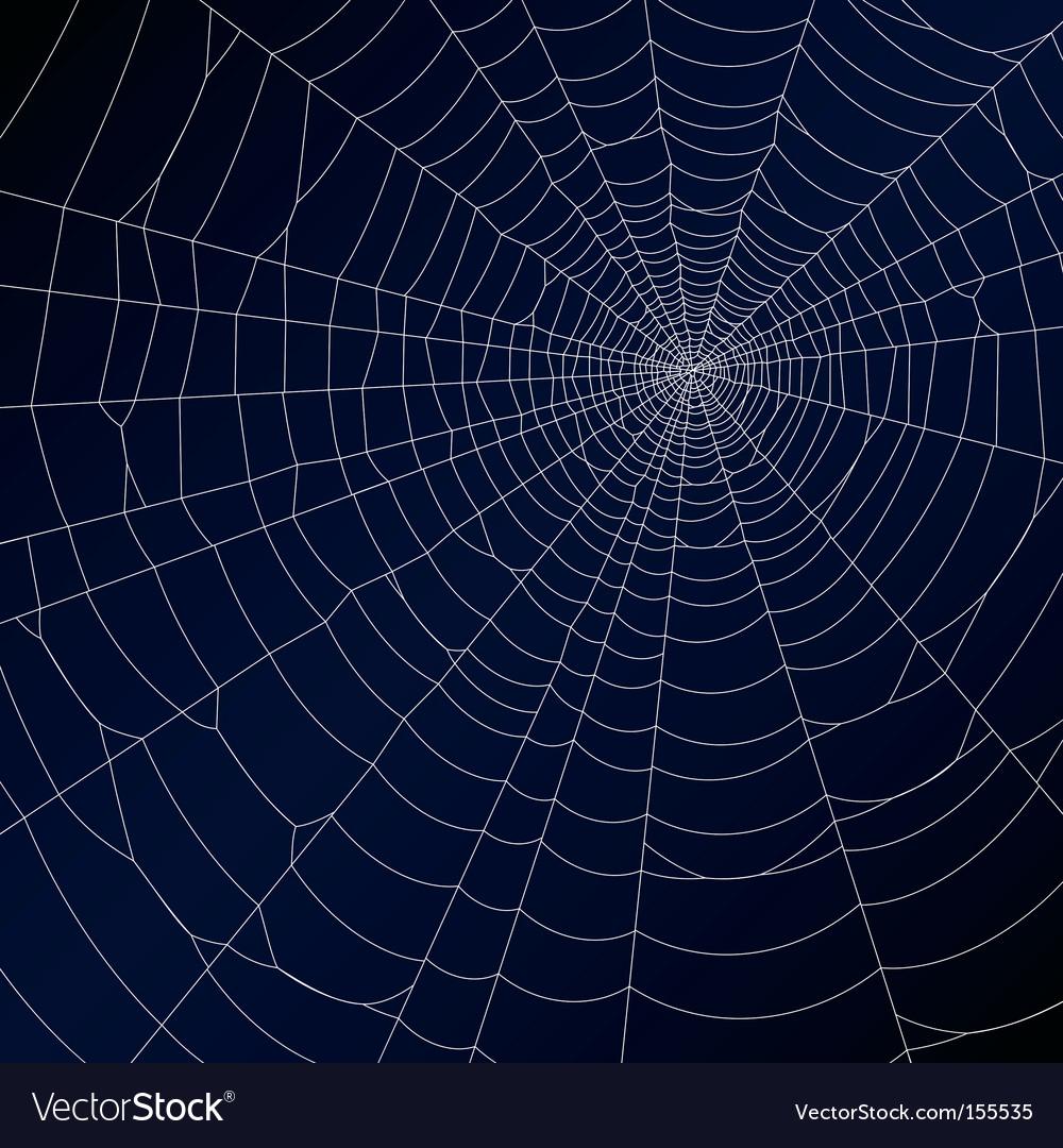 Spiderweb vector