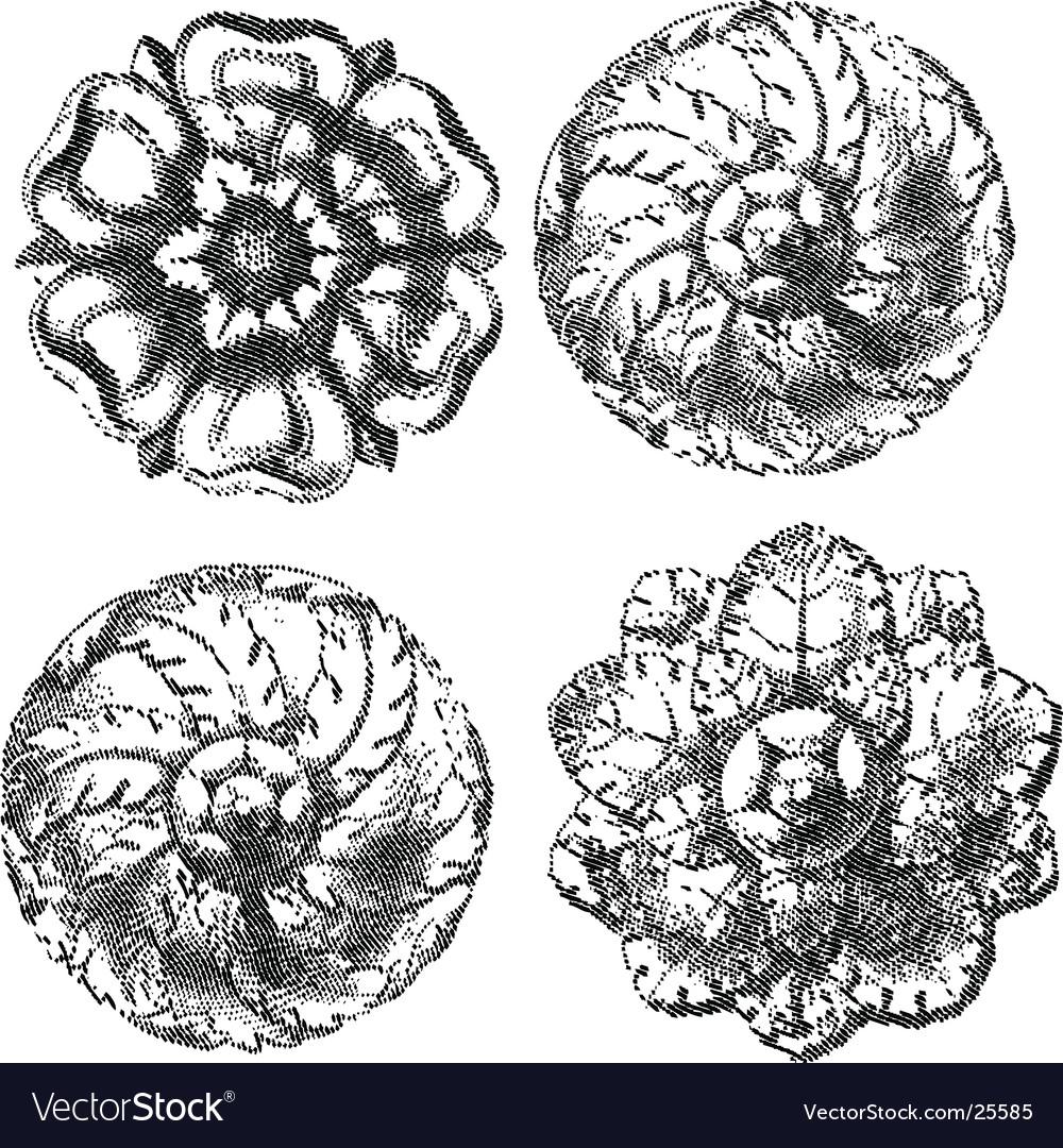 Engraved circle ornaments vector