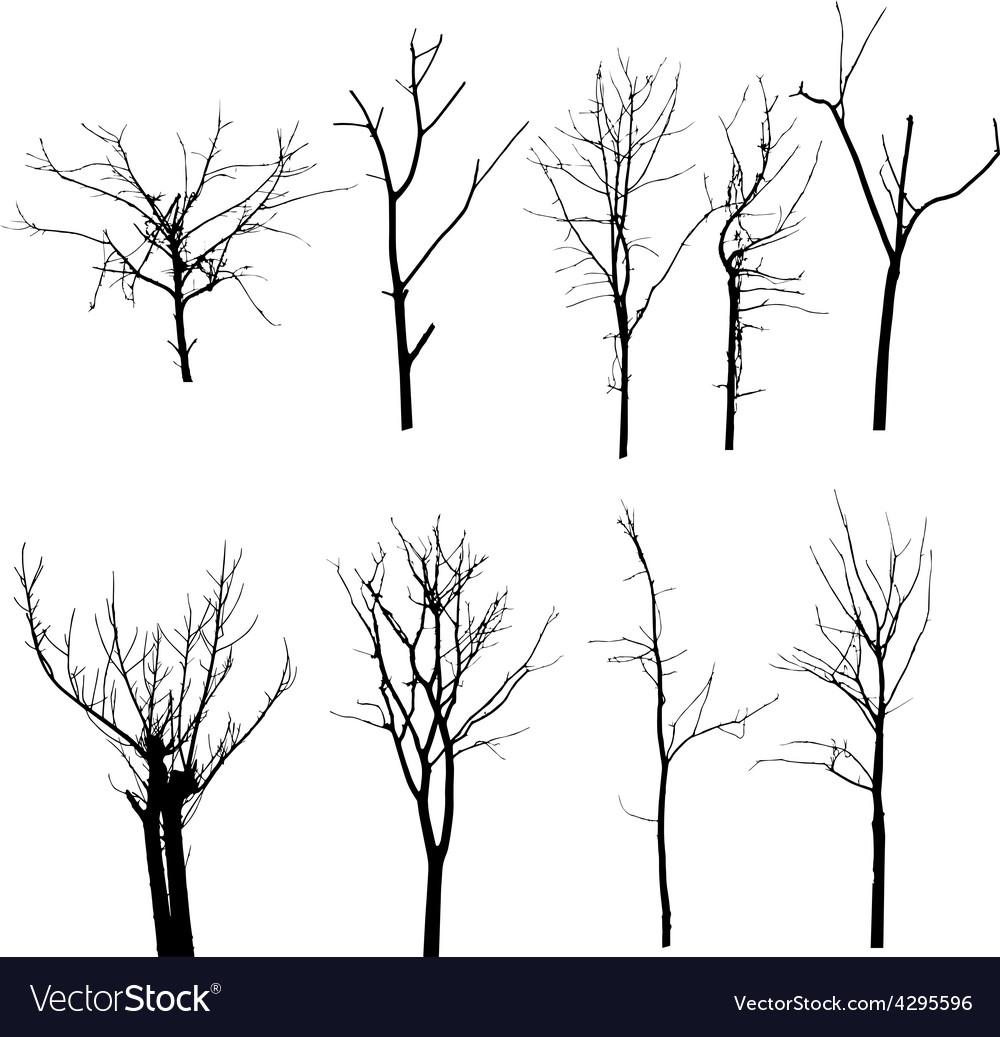 Black silhouette of a bare tree vector