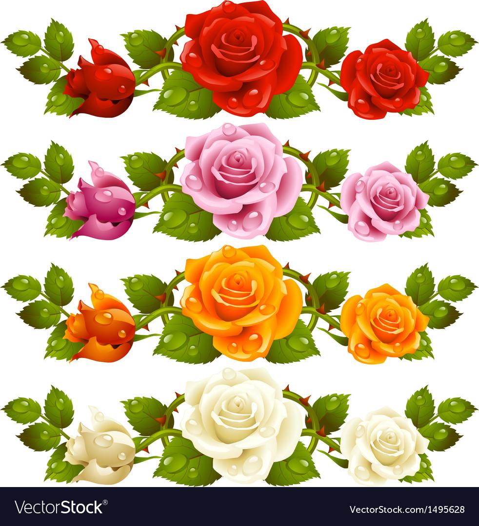 Rose horizontal vignette vector