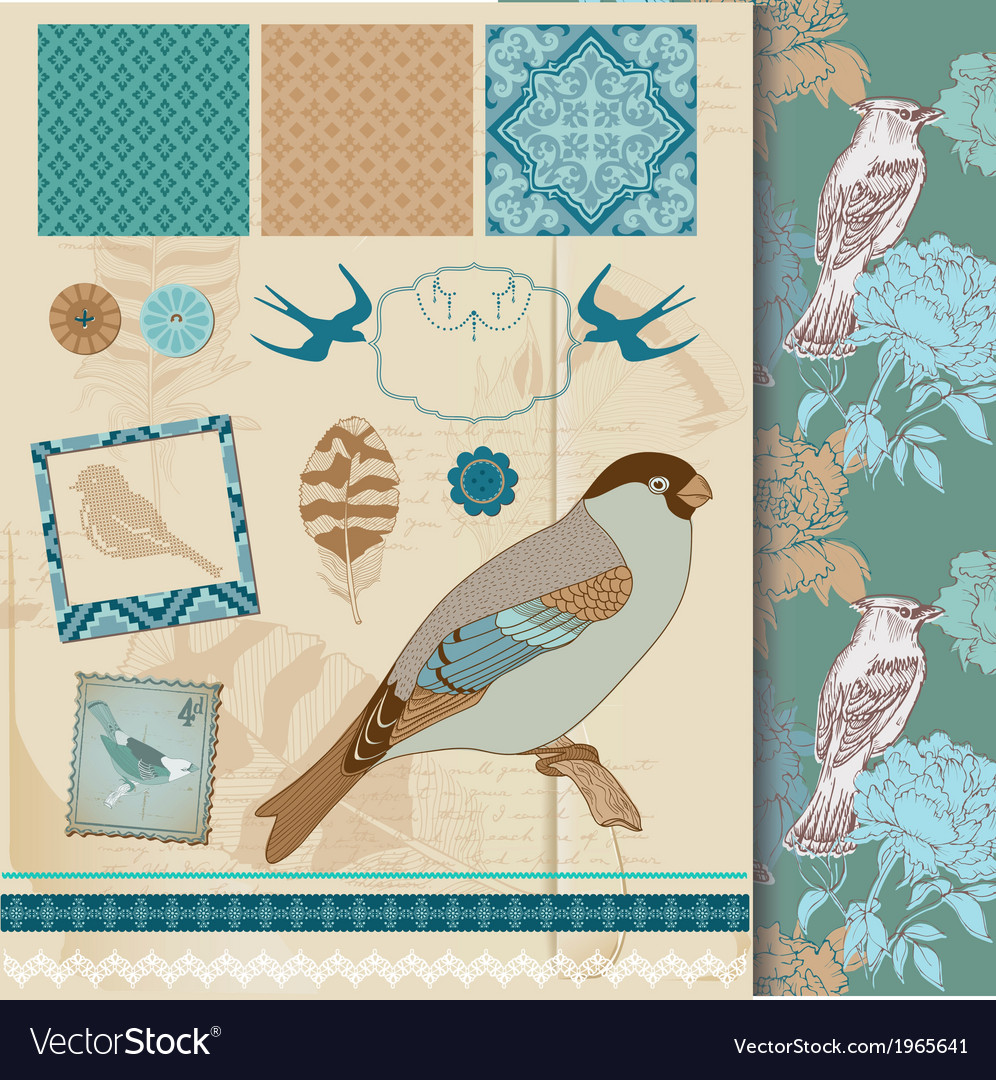 Design set - vintage birds and feathers vector