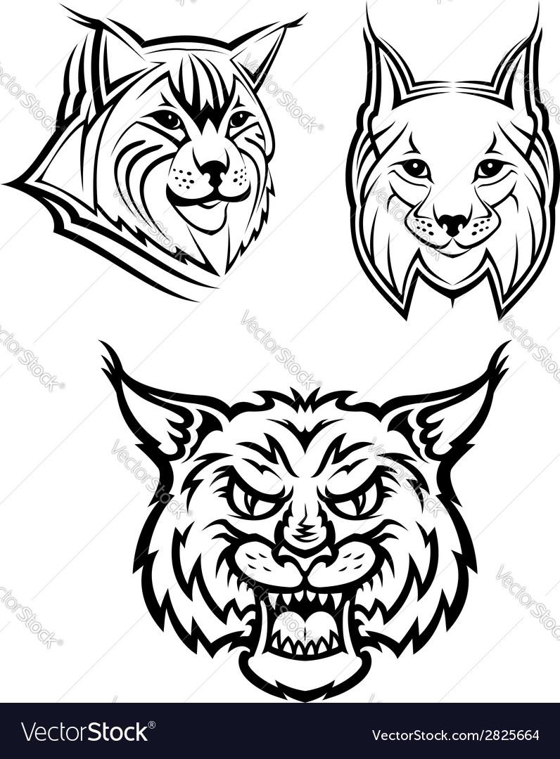 Wild bobcat or lynx mascots vector