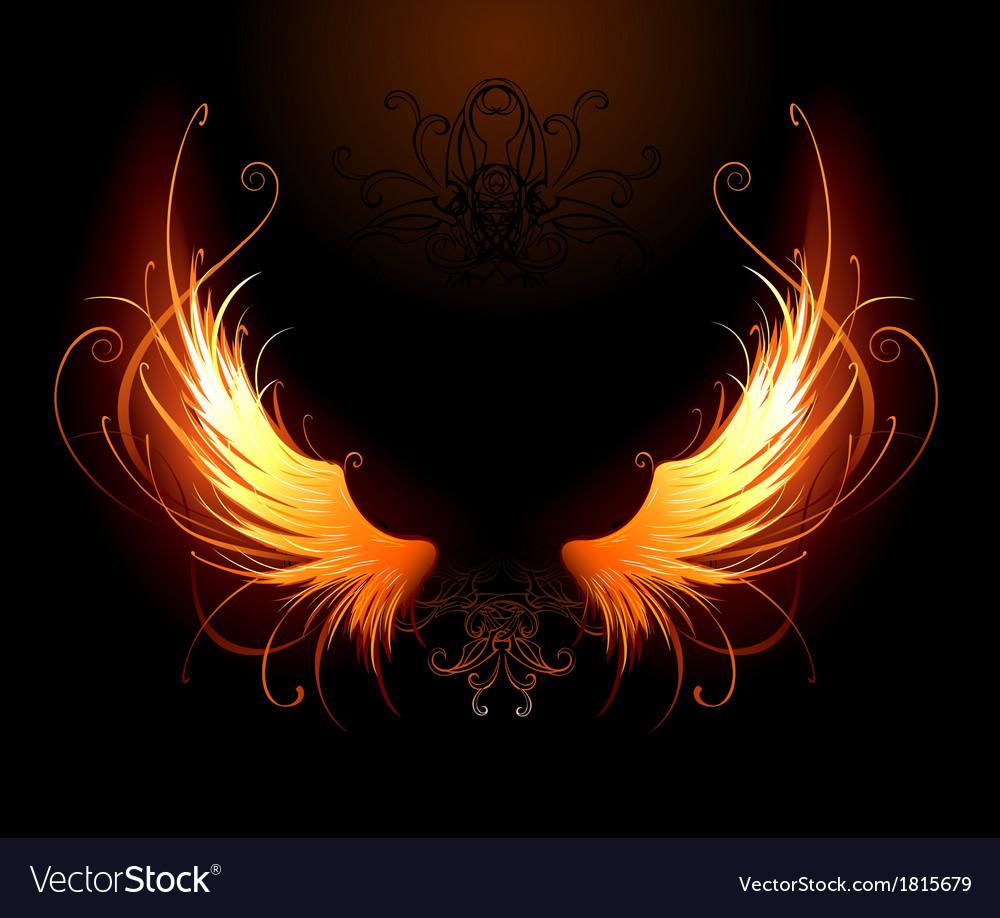 Fiery wings vector