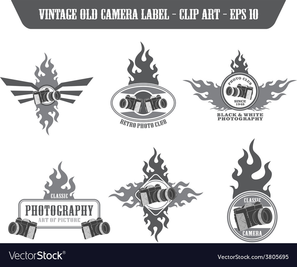 Photography label sticker vector