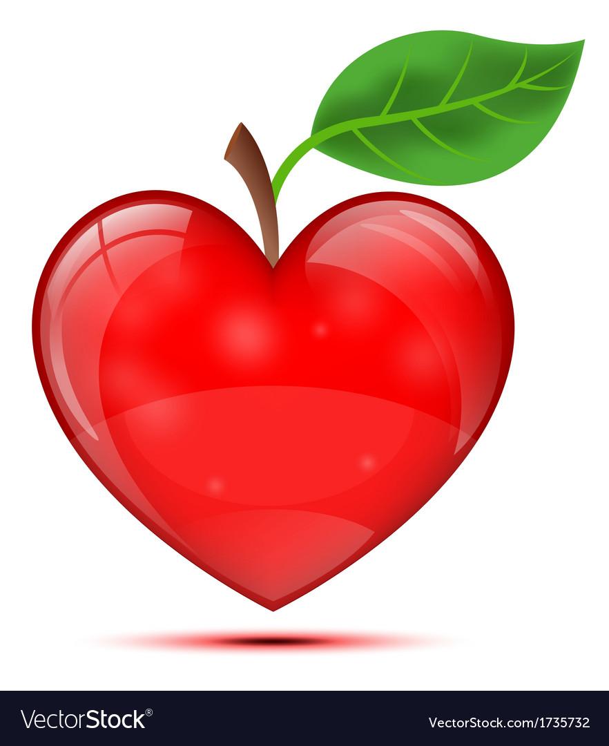 Heart apple vector