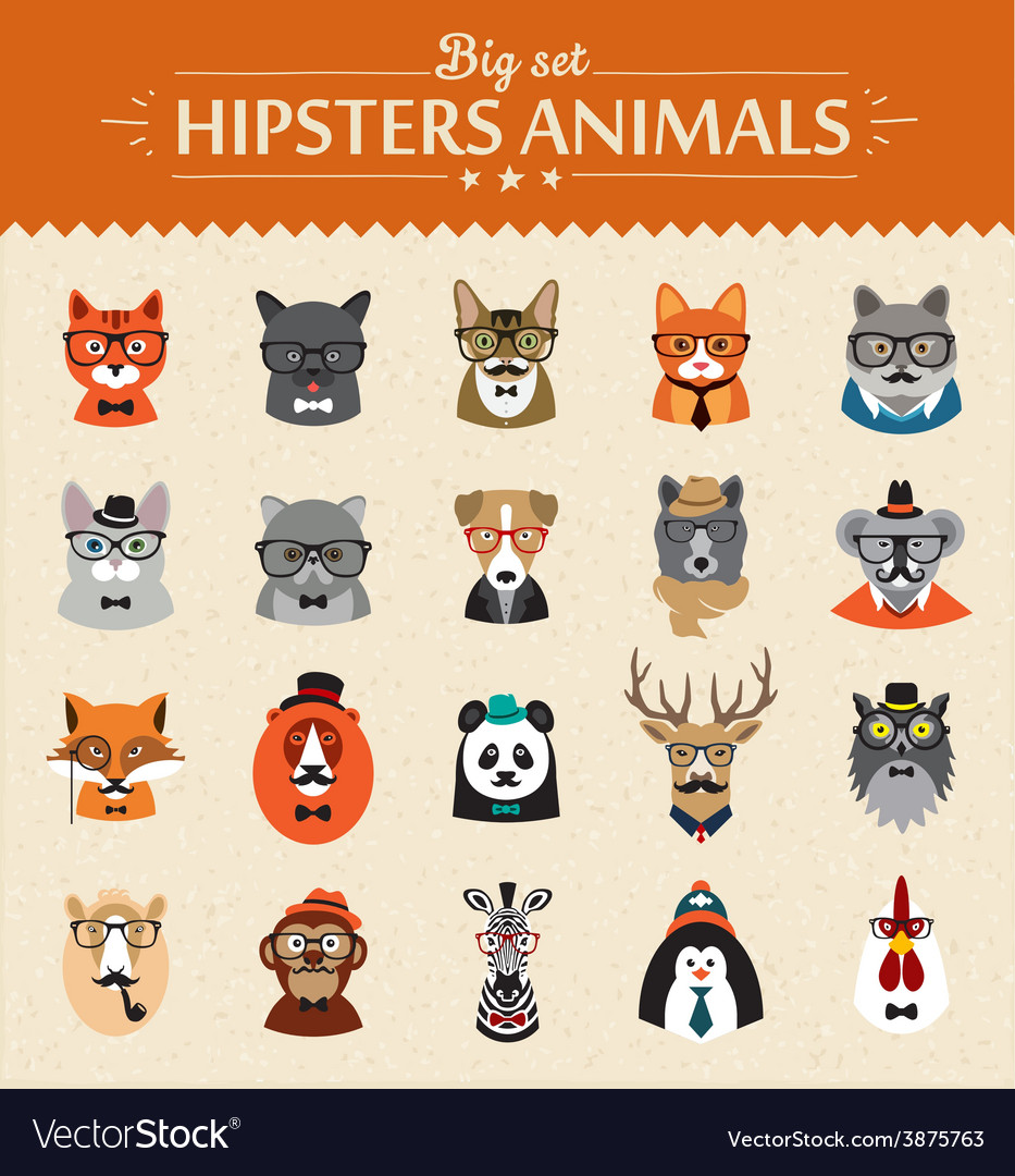 Cute fashion hipster animals of icons vector
