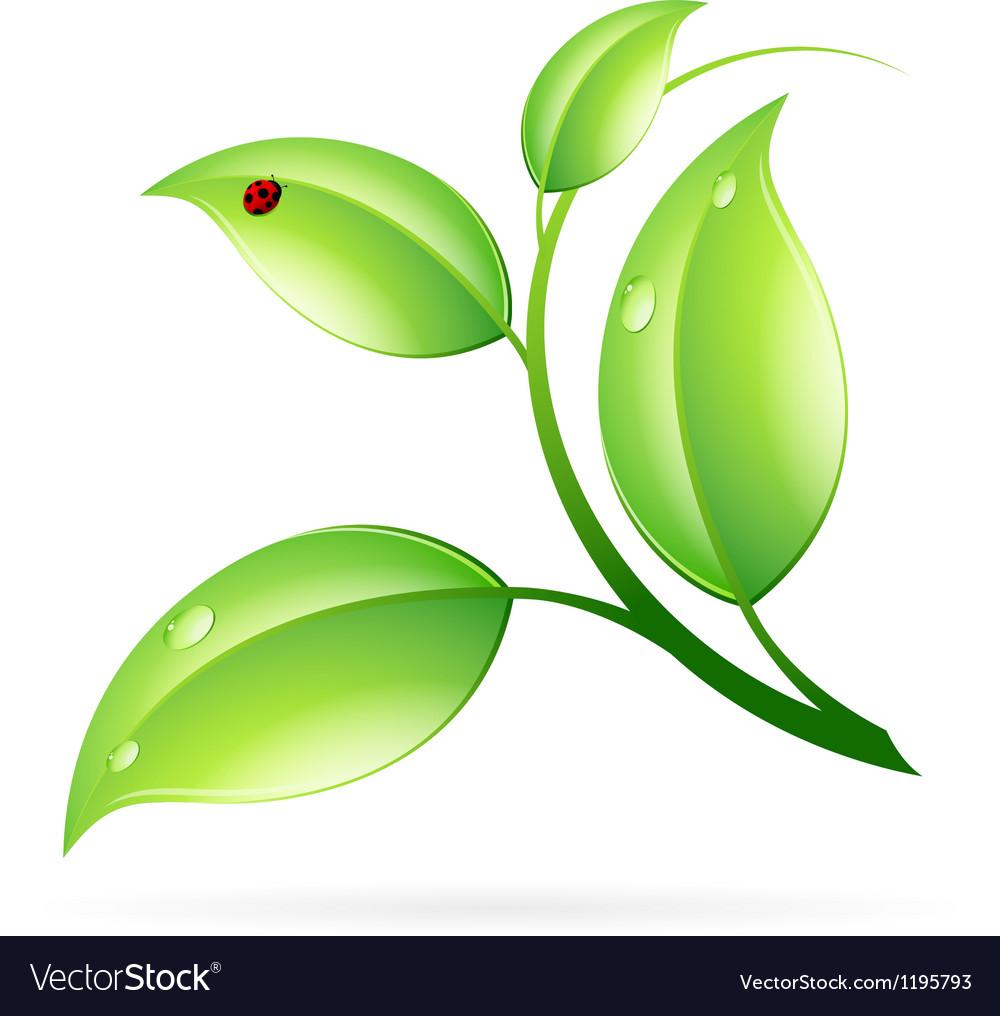 Logo ecology concept vector