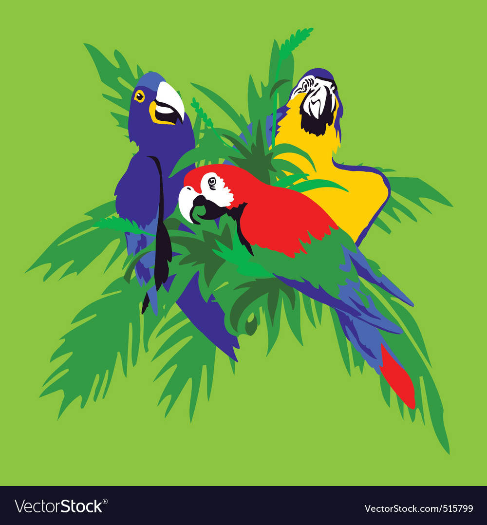 Parrot macaws in palm leaves vector