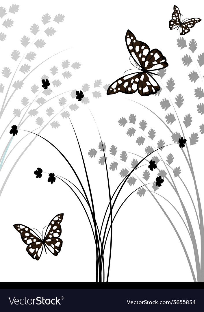 Swirl-elements-and-butterflies vector