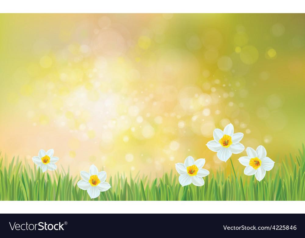 Flowers spring vector