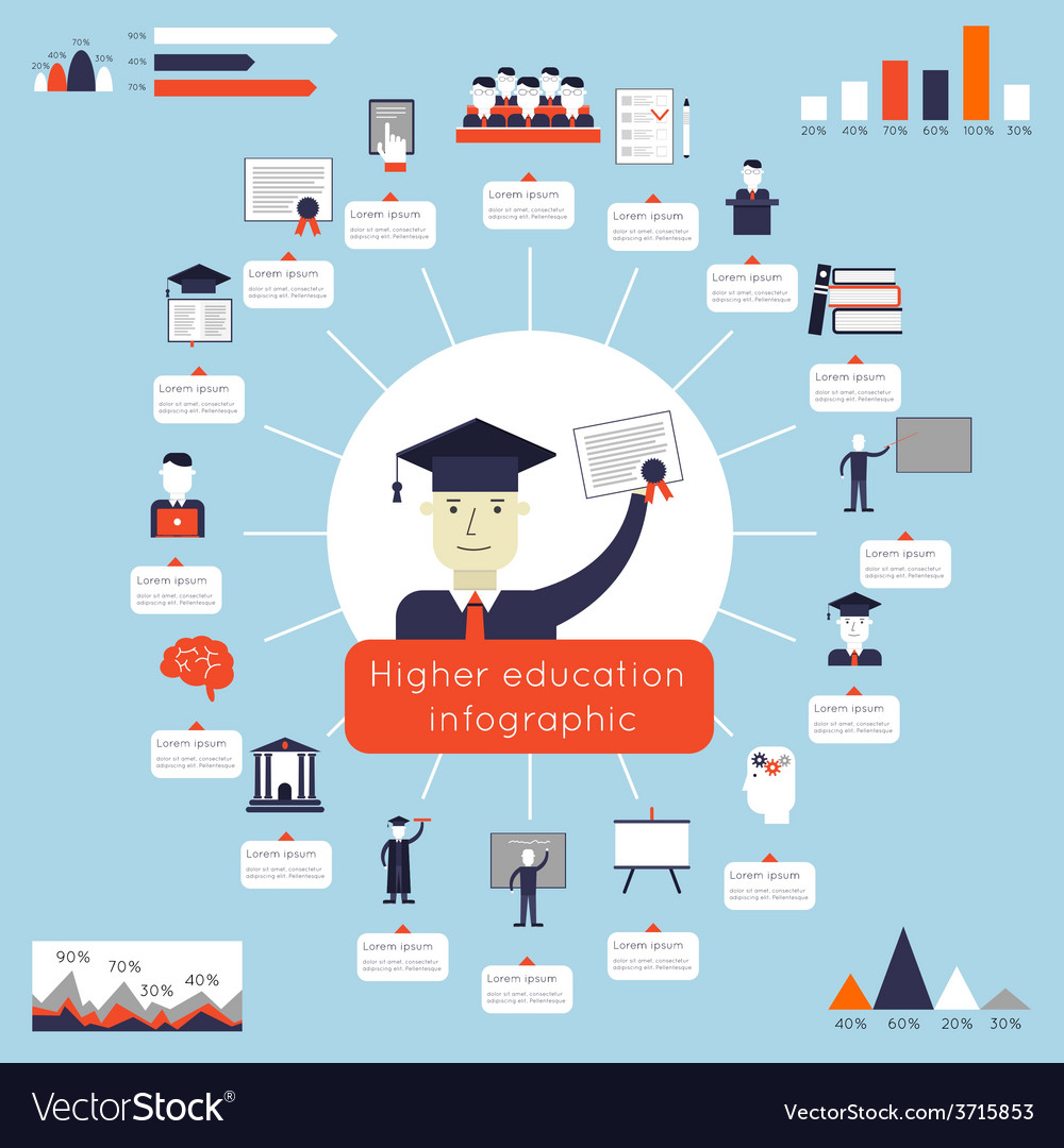 Higher education infographics vector