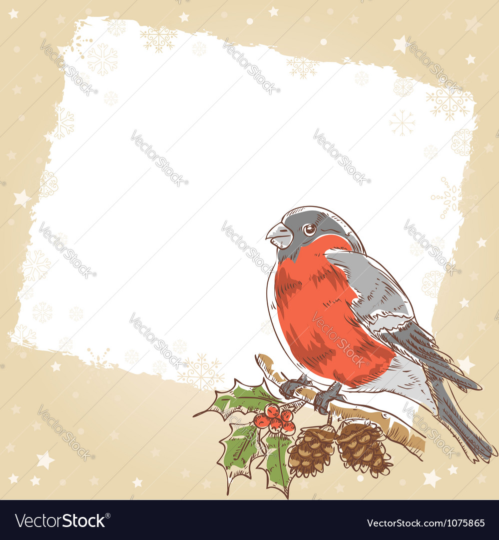 Christmas hand drawn postcard with bullfinch bird vector