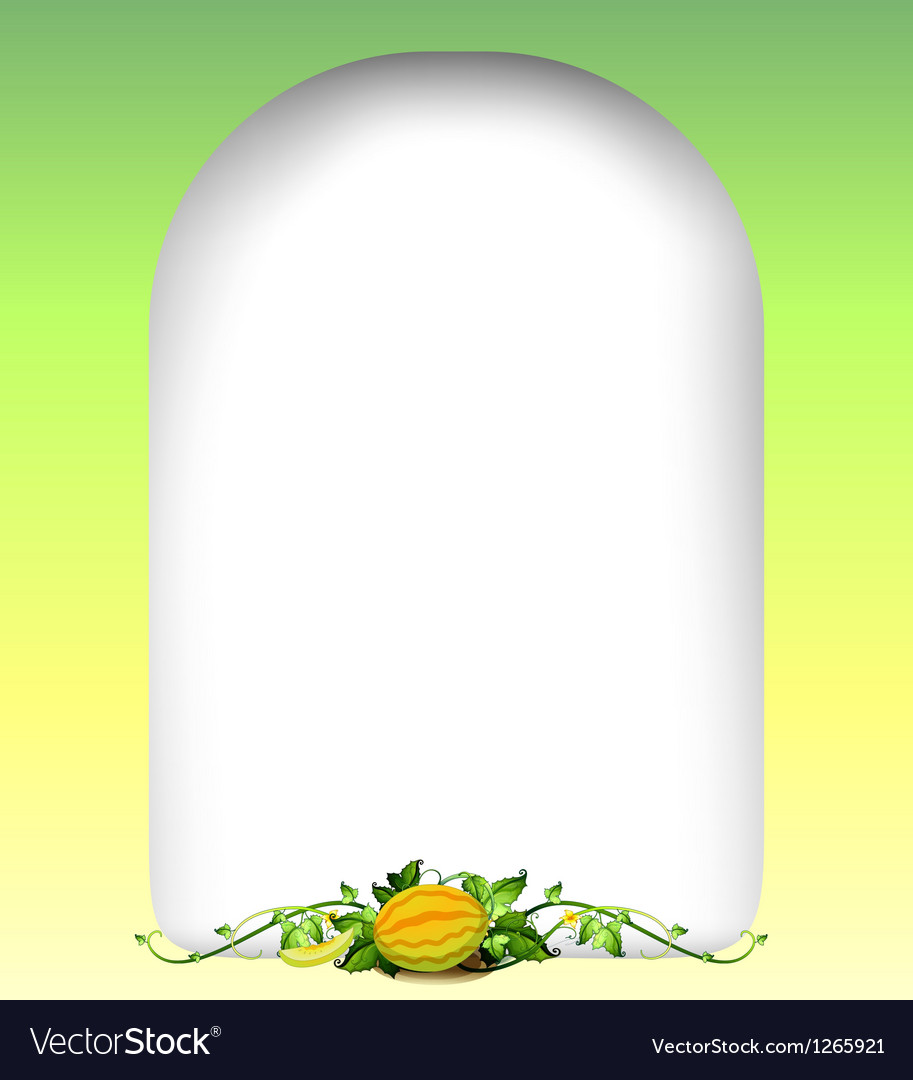 A blank template with a vine fruit vector