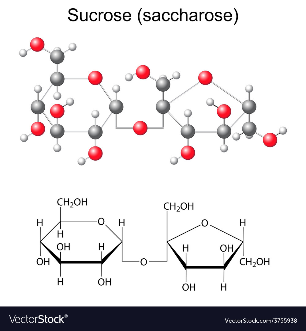 Chemical formula and model of sucrose vector