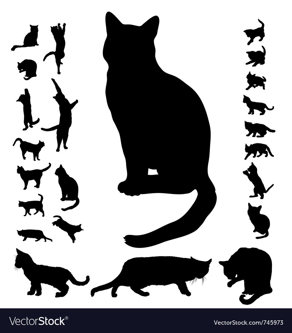 Cat silhouette collection vector