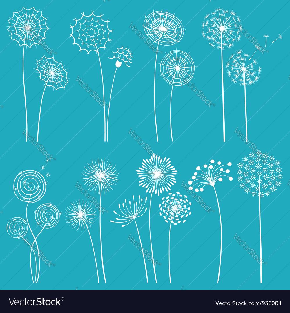 Set of dandelions vector