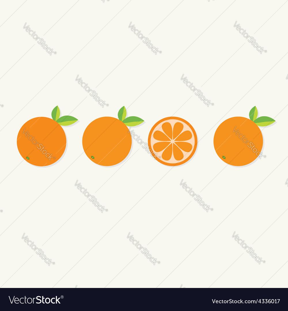 Orange fruit set with leaf in a row cut half vector