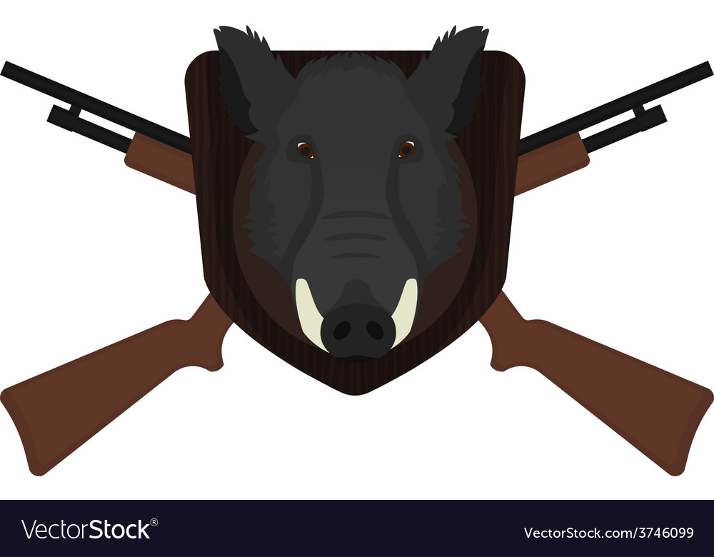 Hunting trophy stuffed wild boar head no outline vector