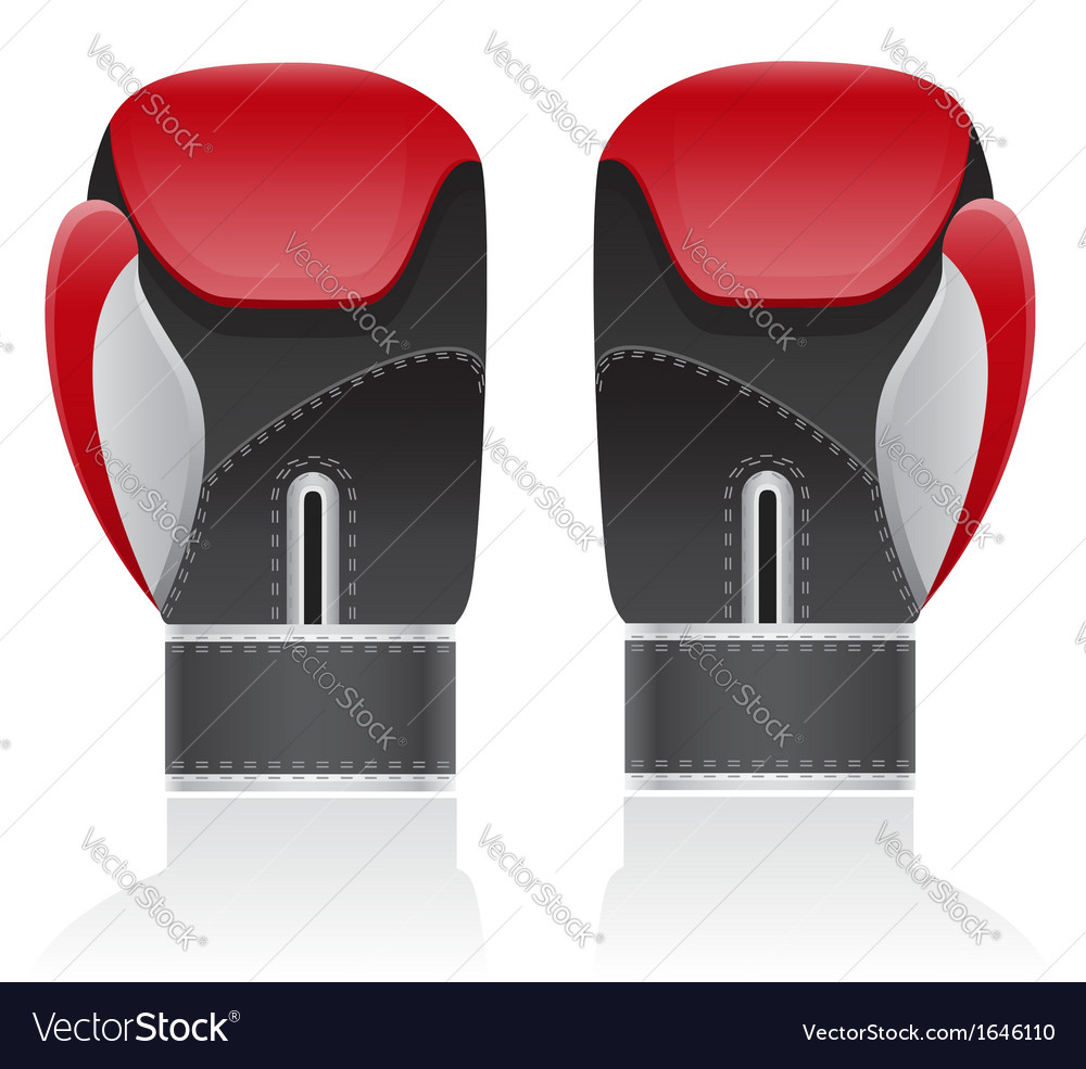 Boxing gloves 02 vector