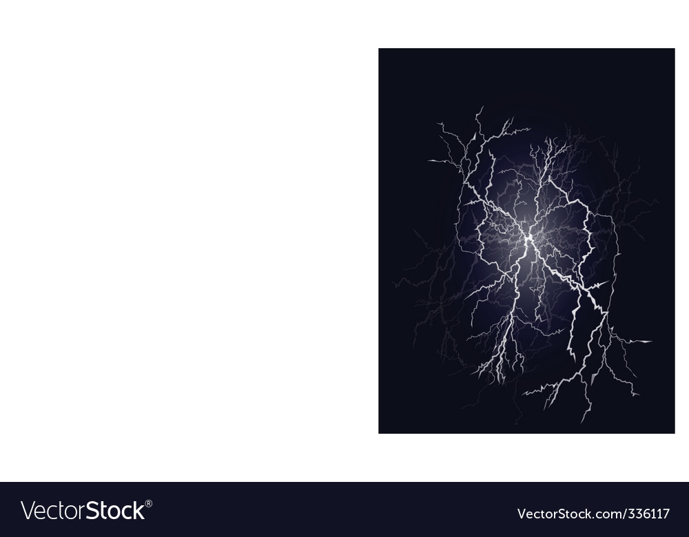 Flash vector