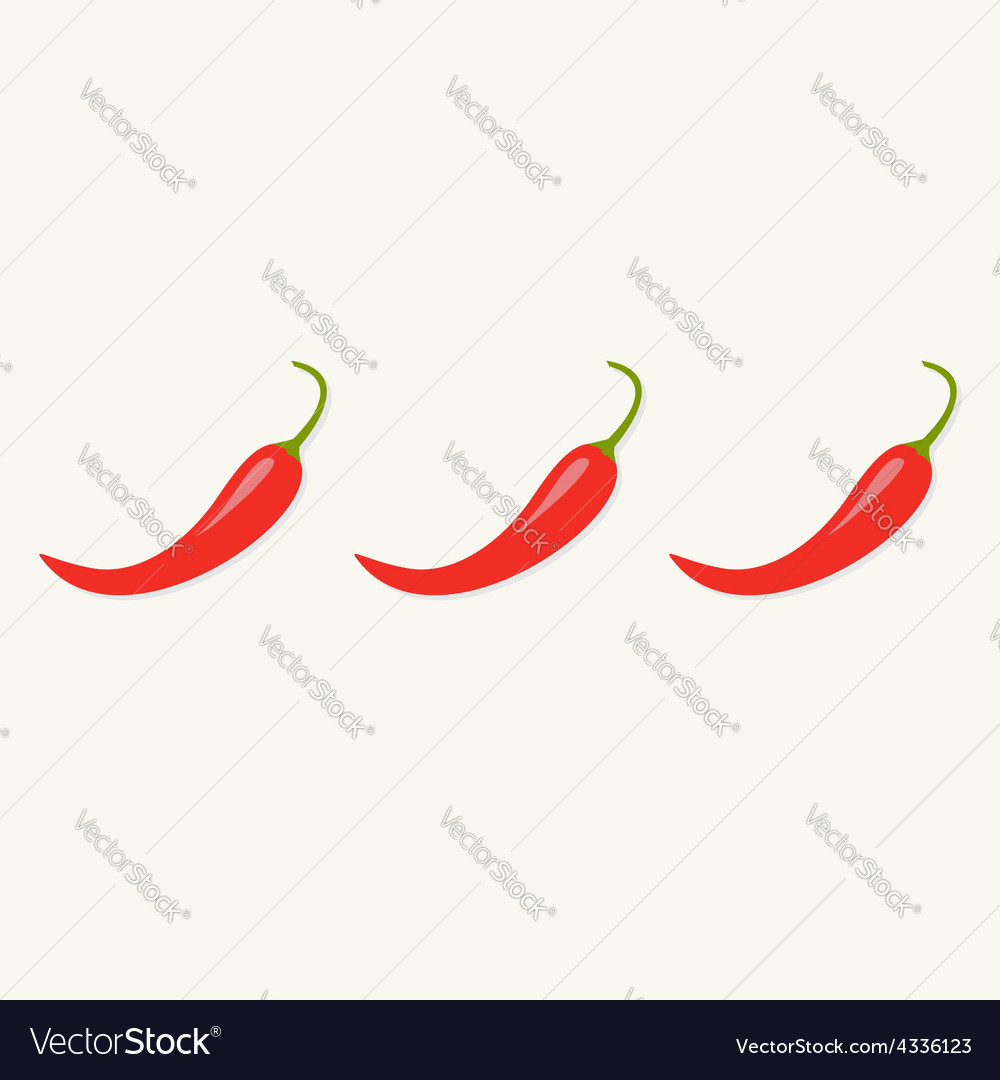 Hot red chili jalapeno pepper in a row isolated vector