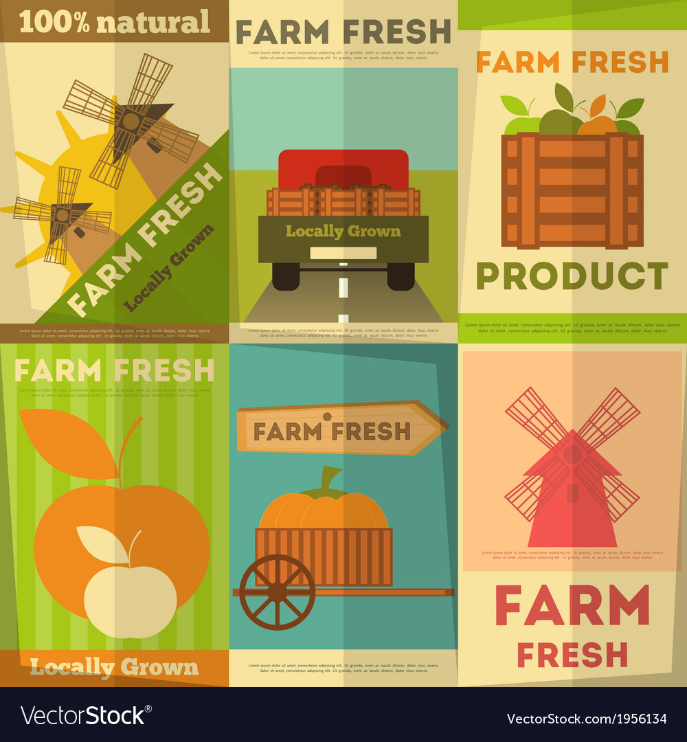 Organic food posters vector