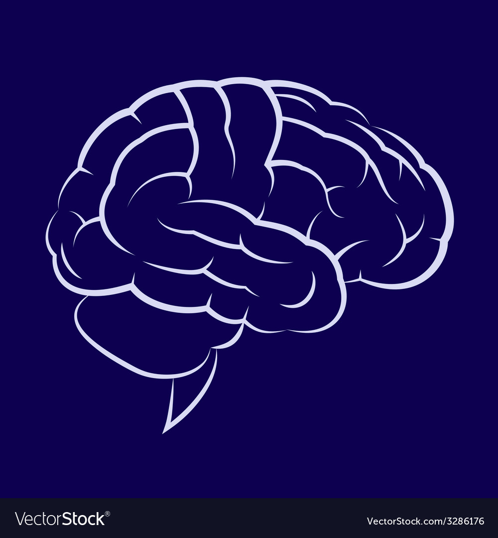 Symbol of the human brain vector