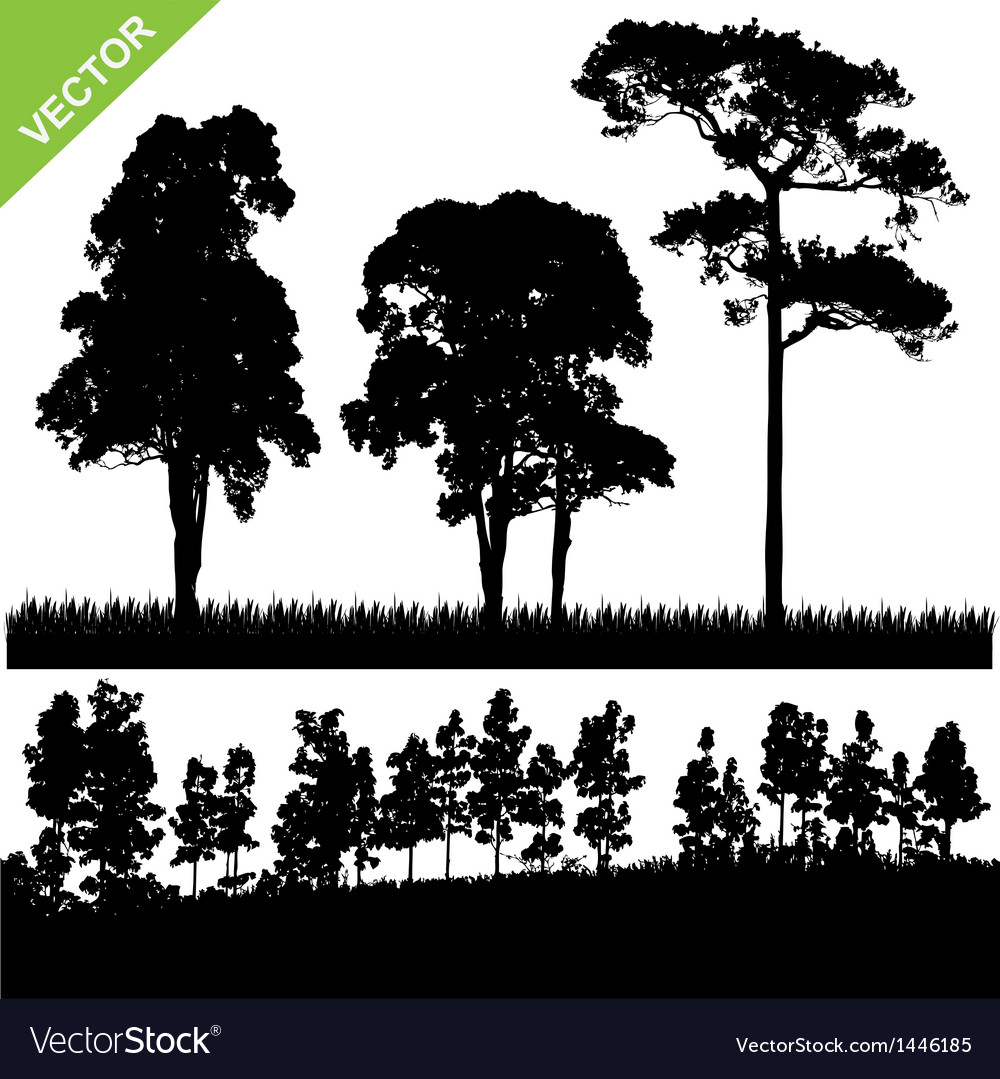 Tree and forest silhouette vector