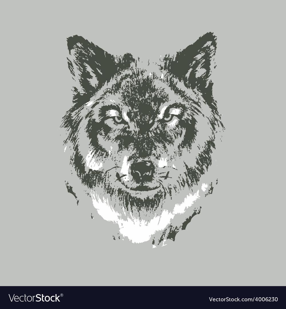 Hand drawn wolf sketch vector