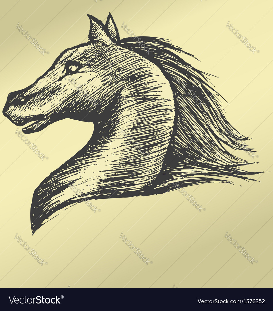 Painted by hand head horse running gallop vector