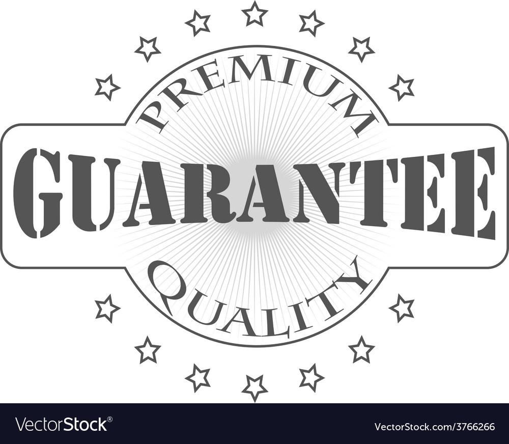 Premium garantee vector