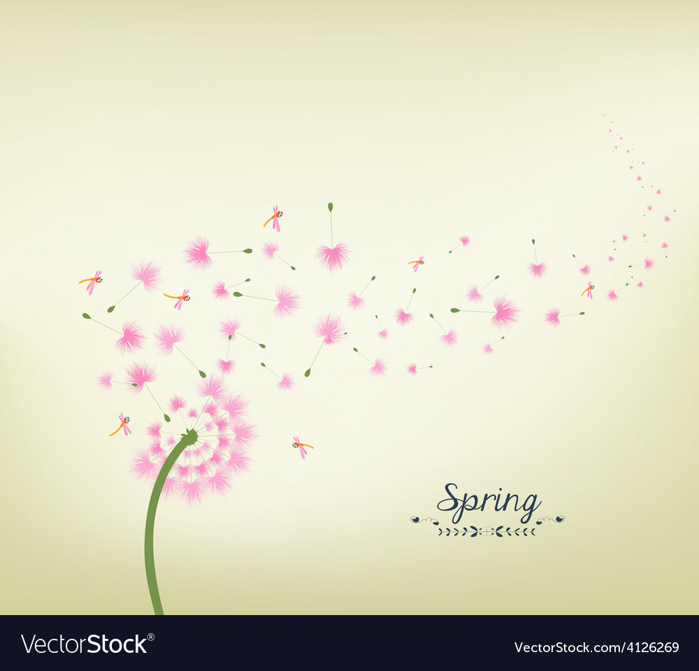 Blossom dandelions into spring vintage vector