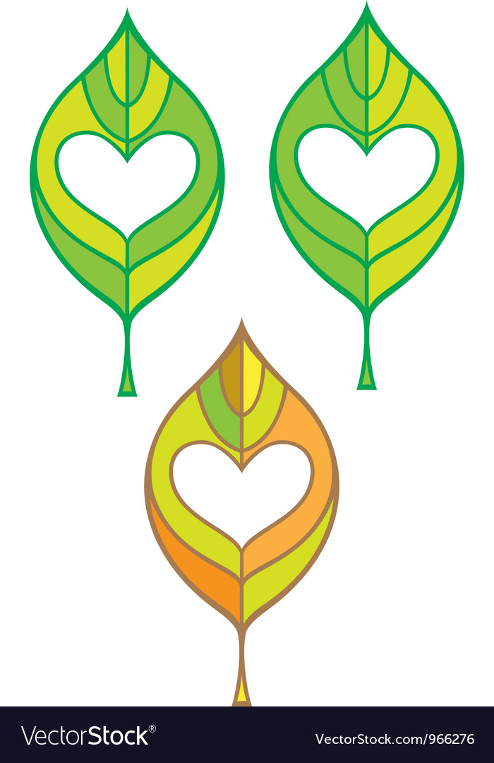 Leaf with heart in it vector