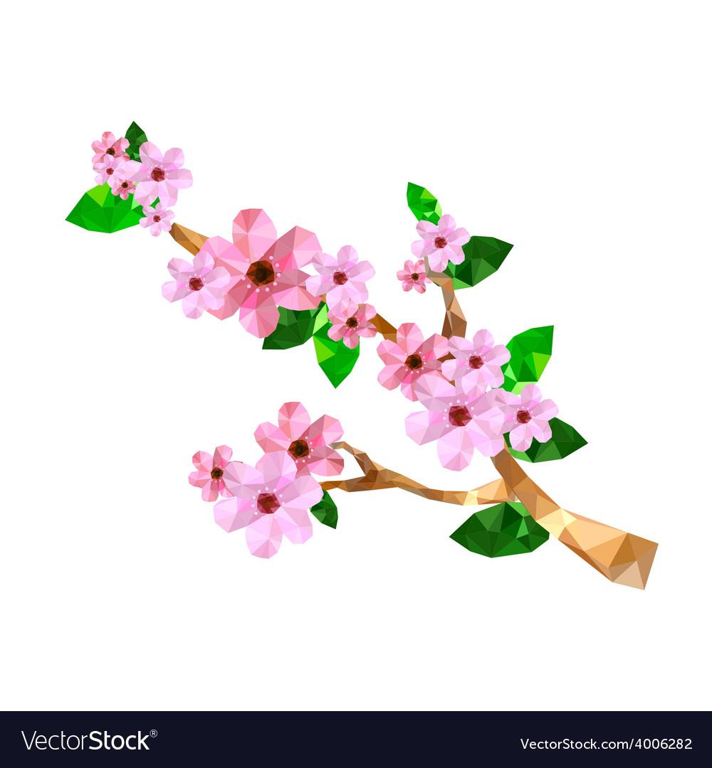 Origami cherry blossom branch vector