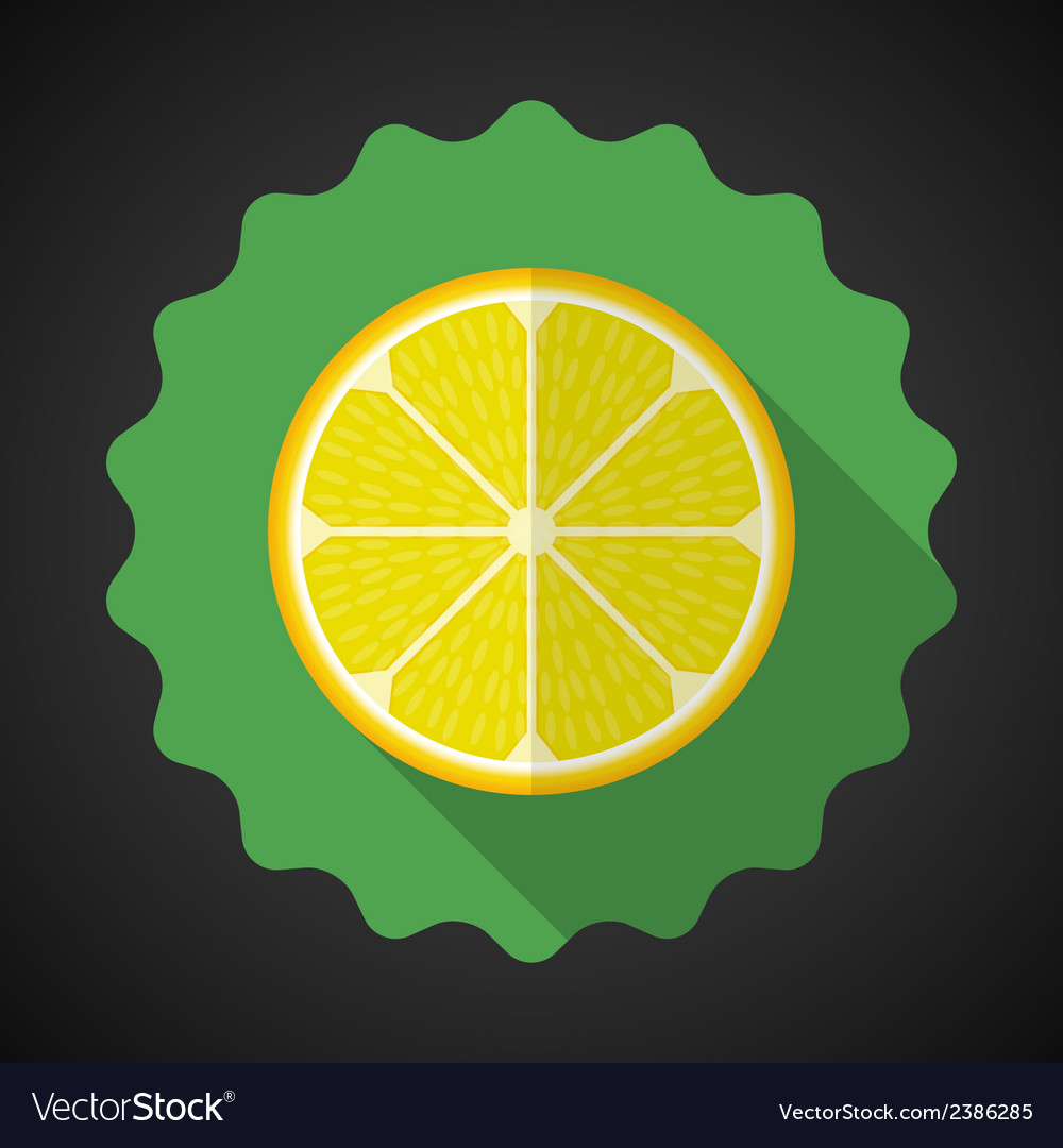 Lemon orange fruit flat icon with long shadow vector