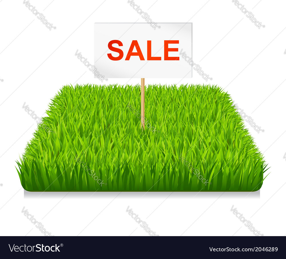 Sale green grass vector